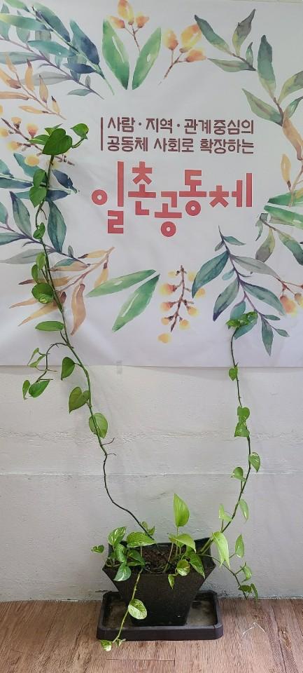 일촌공동체 현수막.jpg